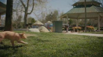 Subaru Outback TV Spot, 'Dog Tested: No Pets Allowed' [T2] - Thumbnail 6