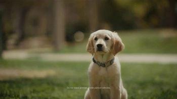 Subaru Outback TV Spot, 'Dog Tested: No Pets Allowed' [T2] - Thumbnail 7