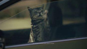Subaru Outback TV Spot, 'Dog Tested: No Pets Allowed' [T2] - Thumbnail 8