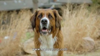 Halo Collars TV Spot, 'Juniper' - Thumbnail 1