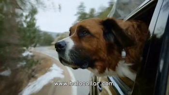 Halo Collars TV Spot, 'Juniper' - Thumbnail 10