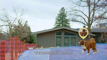Halo Collars TV Spot, 'Juniper' - Thumbnail 9