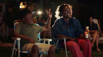 Gold Peak Iced Tea TV Spot, 'Front Yard Family' - Thumbnail 8