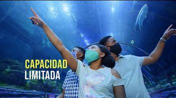 SeaWorld TV Spot, 'Bienvenido de nuevo' [Spanish]