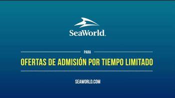 SeaWorld TV Spot, 'Bienvenido de nuevo' [Spanish] - Thumbnail 9
