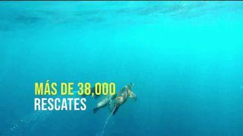 SeaWorld TV Spot, 'Bienvenido de nuevo' [Spanish] - Thumbnail 5