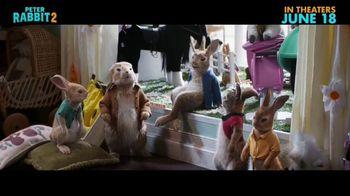 Peter Rabbit 2: The Runaway - Alternate Trailer 8