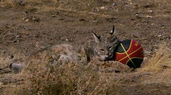 Travel Nevada TV Spot, 'Imlay: Safe Haven' - Thumbnail 7