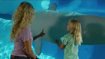 SeaWorld Orlando 4th of July Sale TV Spot, 'Spread Your Wings: Up to 35% Off'
