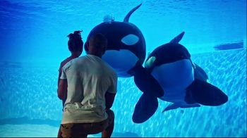SeaWorld 4th of July Sale TV Spot, 'Spread Your Wings: Aquatica Pass'