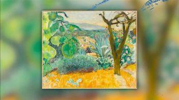 Museum of Fine Arts, Houston TV Spot, 'Monet to Matisse: Impressionism to Modernism' - Thumbnail 9