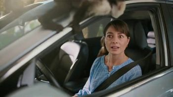 Domino's TV Spot, 'Zoo Successful: No Mask' - Thumbnail 7