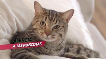 Next TV Spot, 'Alergia: gato' [Spanish] - Thumbnail 2