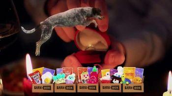 BarkBox TV Spot, 'Ridiculous Adventures' - Thumbnail 5