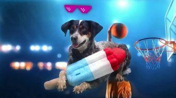BarkBox TV Spot, 'Ridiculous Adventures' - Thumbnail 6