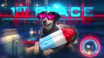 BarkBox TV Spot, 'Ridiculous Adventures'