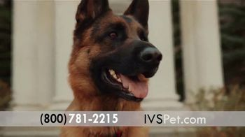 International Veterinary Sciences TV Spot, 'Feel My Best' - Thumbnail 2