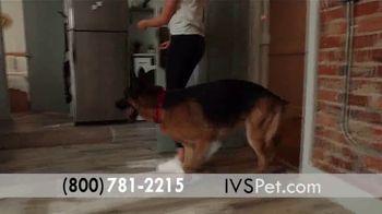 International Veterinary Sciences TV Spot, 'Feel My Best' - Thumbnail 6