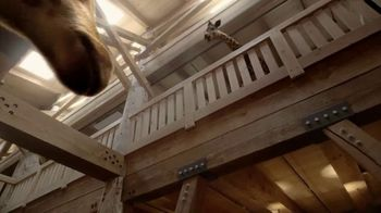 Ark Encounter TV Spot, 'Mom and Dad Giraffe' - Thumbnail 2