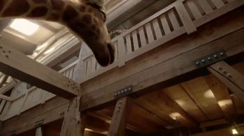 Ark Encounter TV Spot, 'Mom and Dad Giraffe' - Thumbnail 5