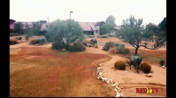 National Ranching Heritage Center TV Spot, 'The Story of Ranching' - Thumbnail 3