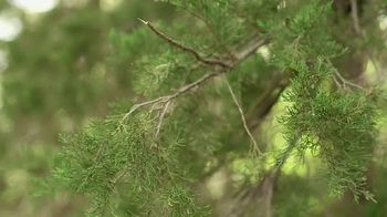 Wildlife Research Center Special Golden Estrus TV Spot, 'Special Favor' Feat. Melissa Bachman - Thumbnail 4
