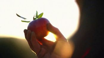 Angry Orchard Hard Cider TV Spot, 'It Takes Two Apples'