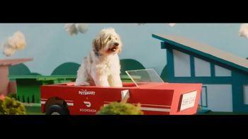 DoorDash TV Spot, 'PetSmart' Song by Barry Louis Polisar