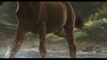 2021 Ford Bronco Sport TV Spot, 'Raised by Goats' [T1] - Thumbnail 6