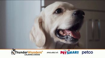 ThunderWunders Calming Chews TV Spot, 'Huckleberry's Buttons' - Thumbnail 10