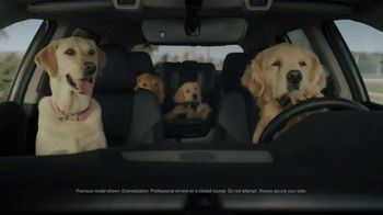 Subaru Outback TV Spot, 'Dog Tested: No Pets Allowed' [T1]