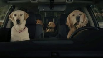 Subaru Outback TV Spot, 'Dog Tested: No Pets Allowed' [T1] - Thumbnail 4