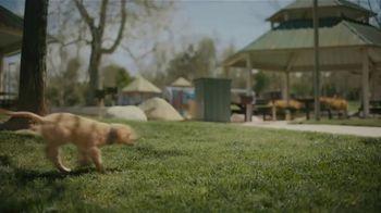 Subaru Outback TV Spot, 'Dog Tested: No Pets Allowed' [T1] - Thumbnail 7