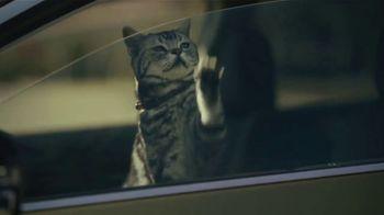 Subaru Outback TV Spot, 'Dog Tested: No Pets Allowed' [T1] - Thumbnail 9