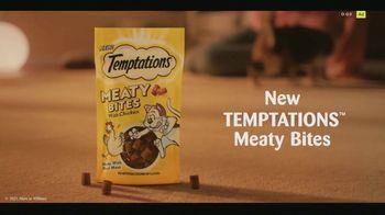 Temptations Meaty Bites TV Spot, 'Easy Prey' - Thumbnail 9