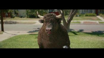 Credible TV Spot, 'Stampede: Meet the Credibull'