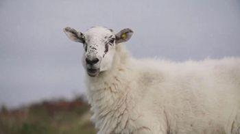 Aer Lingus TV Spot, 'Ireland Scenes' - Thumbnail 6