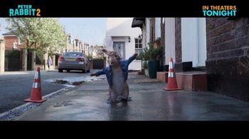 Peter Rabbit 2: The Runaway - Alternate Trailer 30