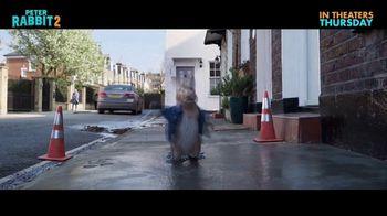 Peter Rabbit 2: The Runaway - Alternate Trailer 27