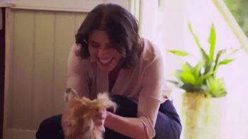 Blue Buffalo TV Spot, 'Our Dogs Deserve a Treat'