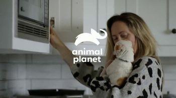 Resolve Carpet Cleaner TV Spot, 'Animal Planet: Thor' - Thumbnail 1