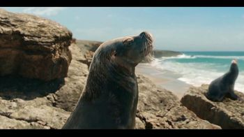 Coors Light TV Spot, 'Foca' canción de Roy Ayers Ubiquity  [Spanish] - Thumbnail 2