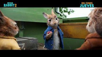 Peter Rabbit 2: The Runaway - Alternate Trailer 29