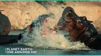 AMC+ TV Spot, 'Wild Summer Collection' - Thumbnail 1
