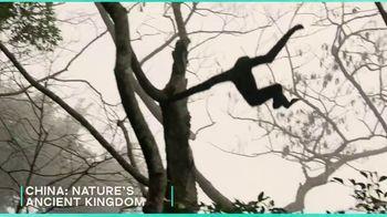 AMC+ TV Spot, 'Wild Summer Collection' - Thumbnail 7