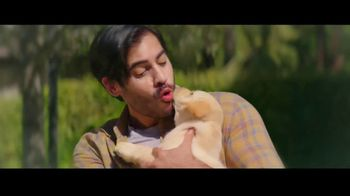 Progressive TV Spot, 'A Pet Too Far' - Thumbnail 3