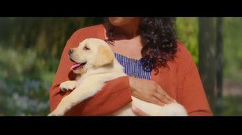 Progressive TV Spot, 'A Pet Too Far' - Thumbnail 4