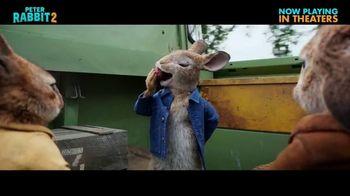 Peter Rabbit 2: The Runaway - Alternate Trailer 47