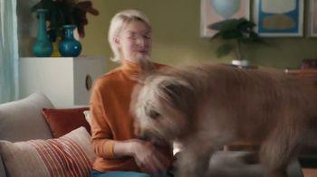 ZipRecruiter TV Spot, 'Job Search: Dog' - Thumbnail 1