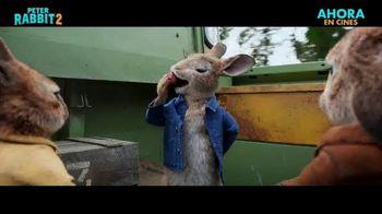 Peter Rabbit 2: The Runaway - Alternate Trailer 45